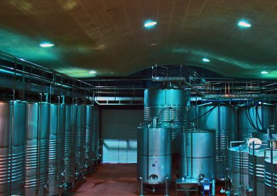 Nave de bodega Natural Rioja Vintage